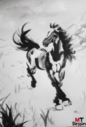 cheval sauvage, allégorie de la liberté, A2, encre de chine.