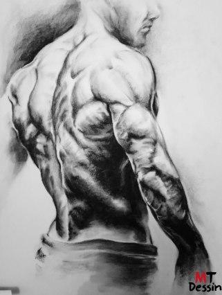 Musculation, Fusain, MTDessin , A2.