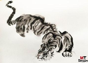 tigre prêt à l'attaque, encre de chine,