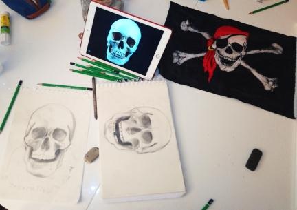 cours de dessin étude squelette crane mtdessin