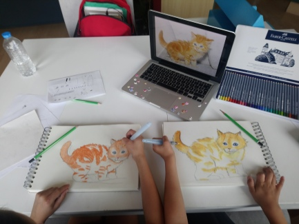 cours de dessin observation animaux mtdessin